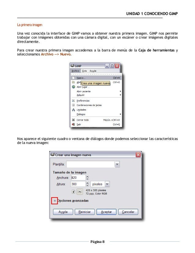 UNIDAD 1 CONOCIENDO GIMPLa primera imagenUna vez conocida la interface de GIMP vamos a obtener nuestra primera imagen. GIM...