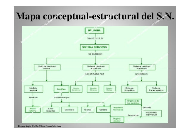 Schema Cablaggio Cavo Ethernet : Clasificacion de los farmacos del sistema nervioso central