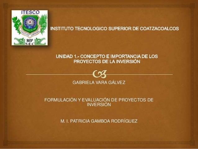 GABRIELA VARA GÁLVEZFORMULACIÓN Y EVALUACIÓN DE PROYECTOS DE                INVERSIÓN     M. I. PATRICIA GAMBOA RODRÍGUEZ