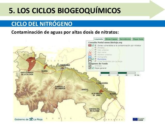 Unidad 10.5   los ciclos biogeoquímicos Slide 9