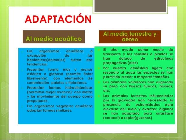 ADAPTACIÓNAl medio acuáticoo Los organismos acuáticos aexcepción de lasbentónicas(animales) sufren dostendencias:o Present...