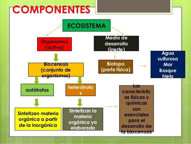 COMPONENTESECOSISTEMAMedio dedesarrollo(inerte)Organismos(activa)Biocenosis(conjunto deorganismos)heterótrofosautótrofosSi...