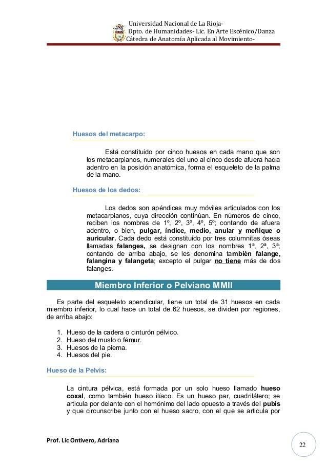 Contemporáneo Piernas Nombres De Los Huesos Viñeta - Imágenes de ...
