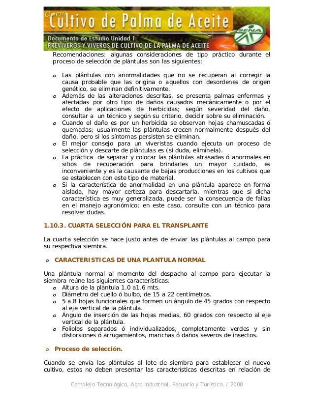 Unidad 1 previveros y viveros de cultivo de la palma de aceite for Preparacion de sustrato para viveros forestales