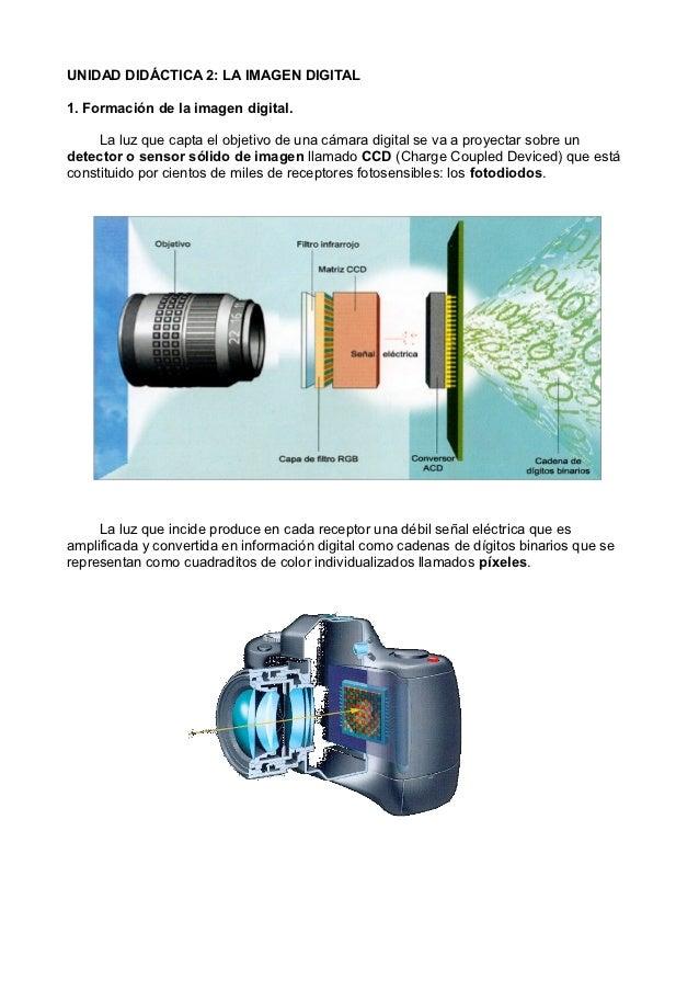 UNIDAD DIDÁCTICA 2: LA IMAGEN DIGITAL1. Formación de la imagen digital.     La luz que capta el objetivo de una cámara dig...