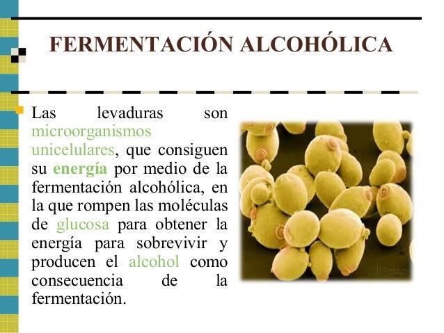 Los artículos sobre el alcoholismo de cerveza