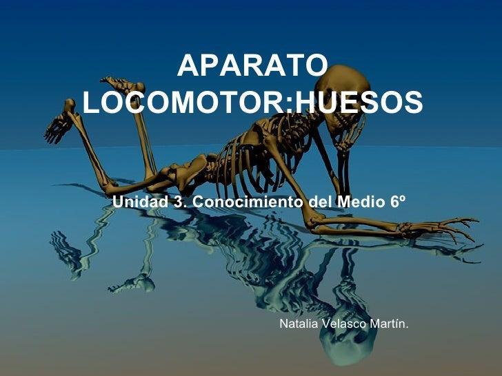 APARATO LOCOMOTOR:HUESOS Unidad 3. Conocimiento del Medio 6º Natalia Velasco Martín.