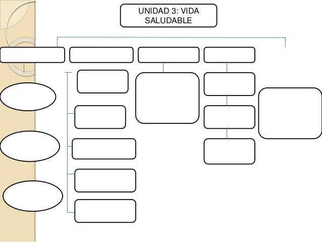 UNIDAD 3: VIDA  SALUDABLE