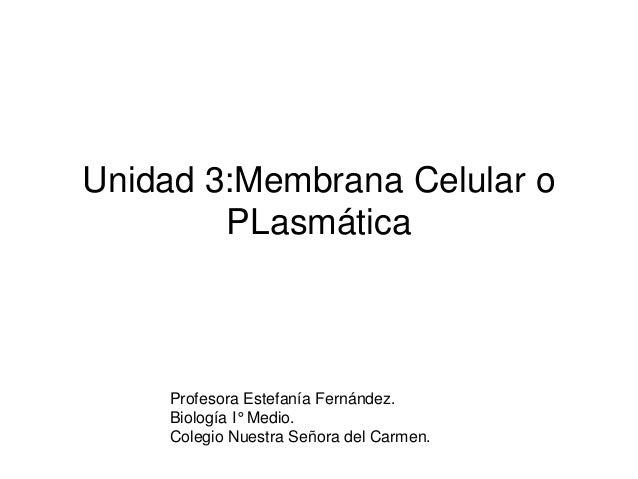 Unidad 3:Membrana Celular o PLasmática Profesora Estefanía Fernández. Biología I° Medio. Colegio Nuestra Señora del Carmen.