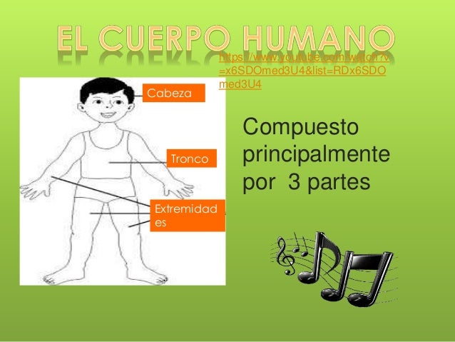 CUERPO HUMANO Slide 3