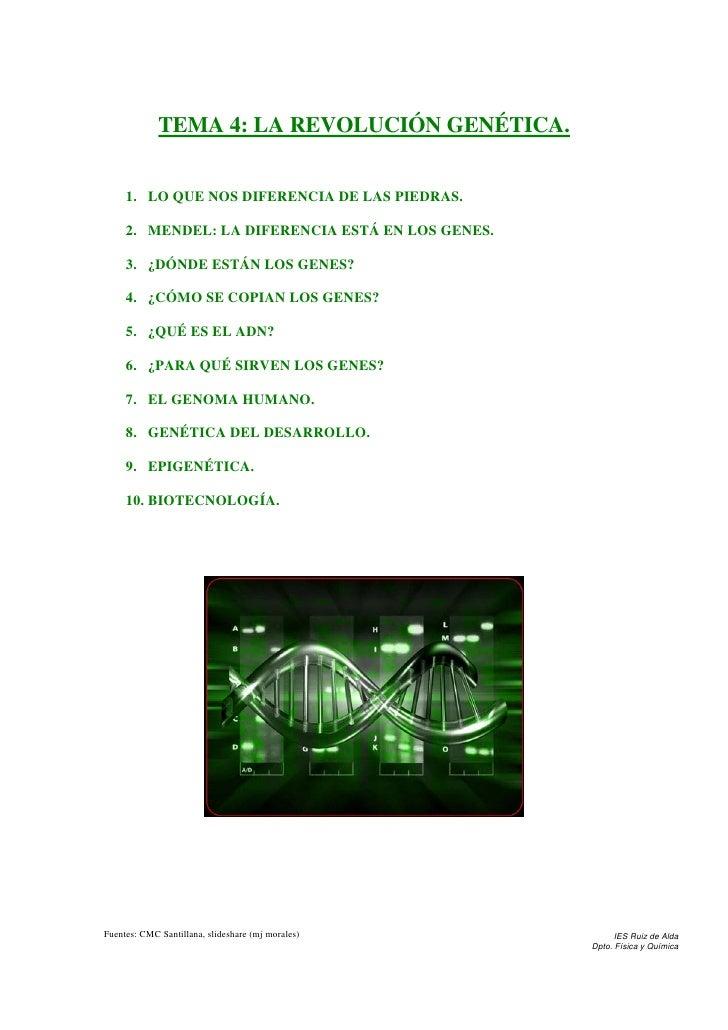 TEMA 4: LA REVOLUCIÓN GENÉTICA.        1. LO QUE NOS DIFERENCIA DE LAS PIEDRAS.       2. MENDEL: LA DIFERENCIA ESTÁ EN LOS...