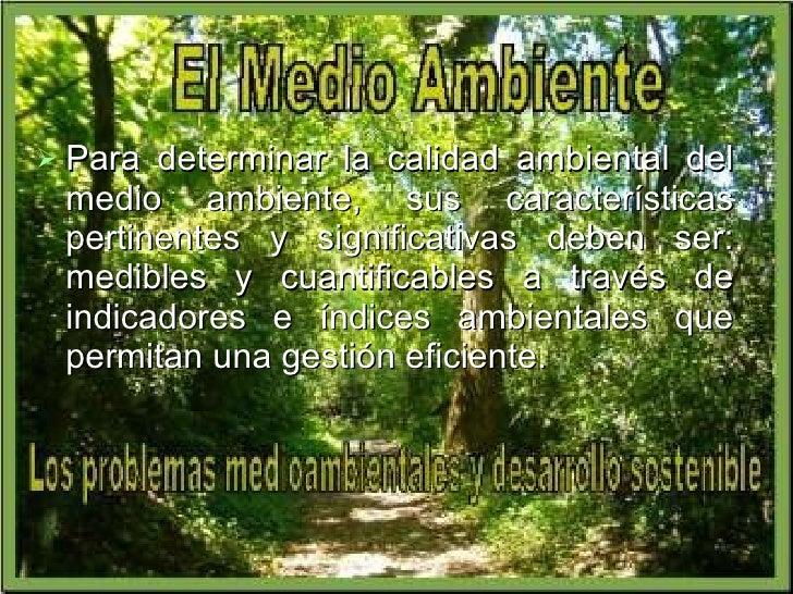 <ul><li>Para determinar la calidad ambiental del medio ambiente, sus características pertinentes y significativas deben se...