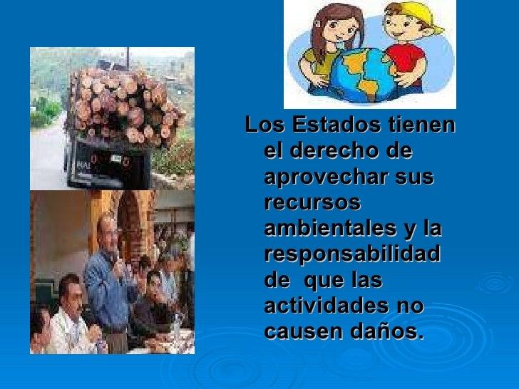 <ul><li>Los Estados tienen el derecho de aprovechar sus recursos ambientales y la responsabilidad de  que las actividades ...