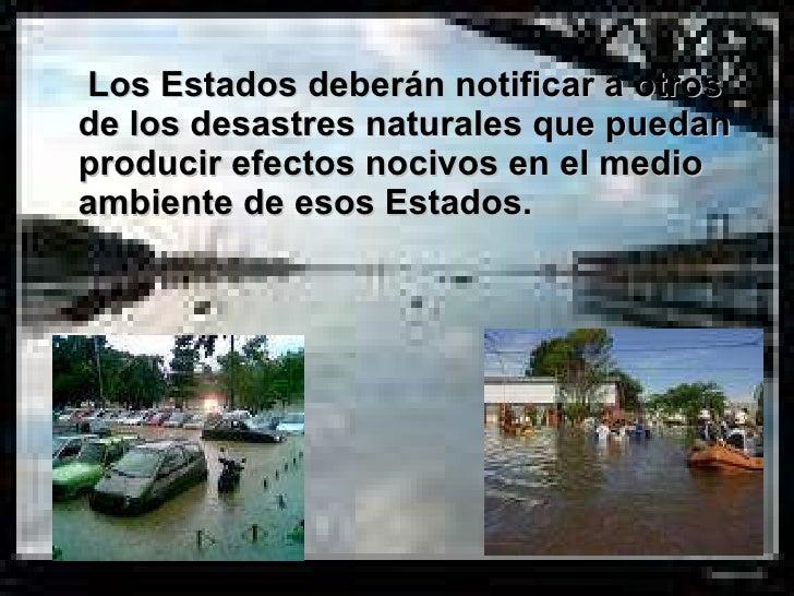<ul><li>Los Estados deberán notificar a otros de los desastres naturales que puedan producir efectos nocivos en el medio a...