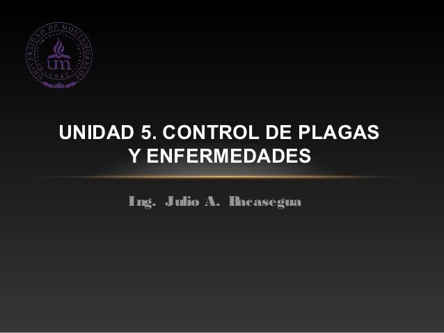 UNIDAD 5. CONTROL DE PLAGAS     Y ENFERMEDADES     Ing. Julio A. Bacasegua