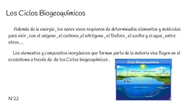 Los Ciclos Biogeoquímicos Además de la energía , los seres vivos requieren de determinados elementos y moléculas para vivi...