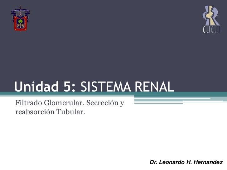 Unidad 5: SISTEMA RENAL<br />Filtrado Glomerular. Secreción y reabsorción Tubular. <br />Dr. Leonardo H. Hernandez<br />