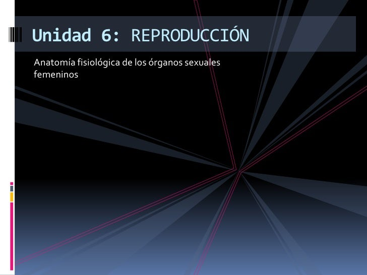 Anatomía fisiológica de los órganos sexuales femeninos<br />Unidad 6: REPRODUCCIÓN<br />