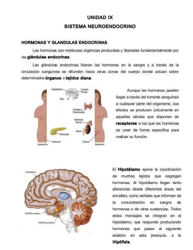 UNIDAD IX SISTEMA NEUROENDOCRINO HORMONAS Y GLANDULAS ENDOCRINAS Las hormonas son moléculas orgánicas producidas y liberad...