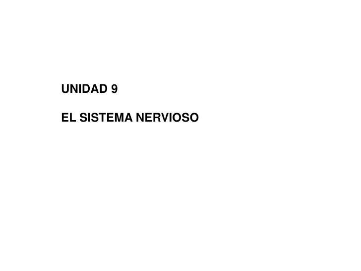 UNIDAD 9<br />EL SISTEMA NERVIOSO<br />