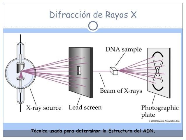 Unidad cero cuartos medios for Cuarto de rayos x