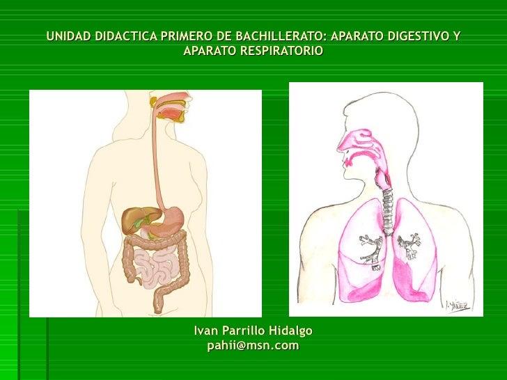 UNIDAD DIDACTICA PRIMERO DE BACHILLERATO: APARATO DIGESTIVO Y APARATO RESPIRATORIO Ivan Parrillo Hidalgo [email_address]
