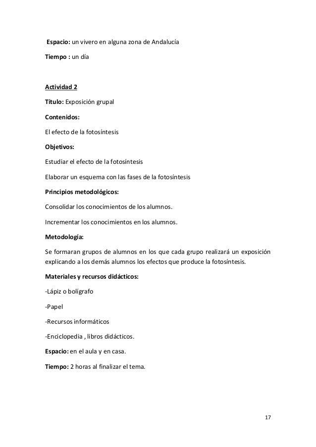 Unidad didactica las plantas for Importancia de un vivero