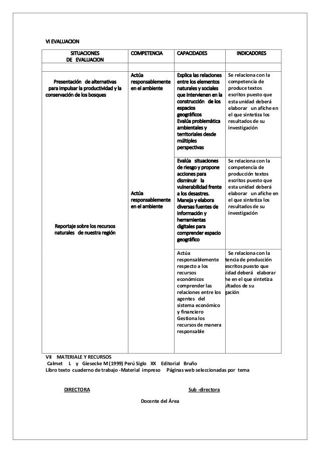 VI EVALUACION SITUACIONES DE EVALUACION COMPETENCIA CAPACIDADES INDICADORES Presentaci�n de alternativas para impulsar la ...
