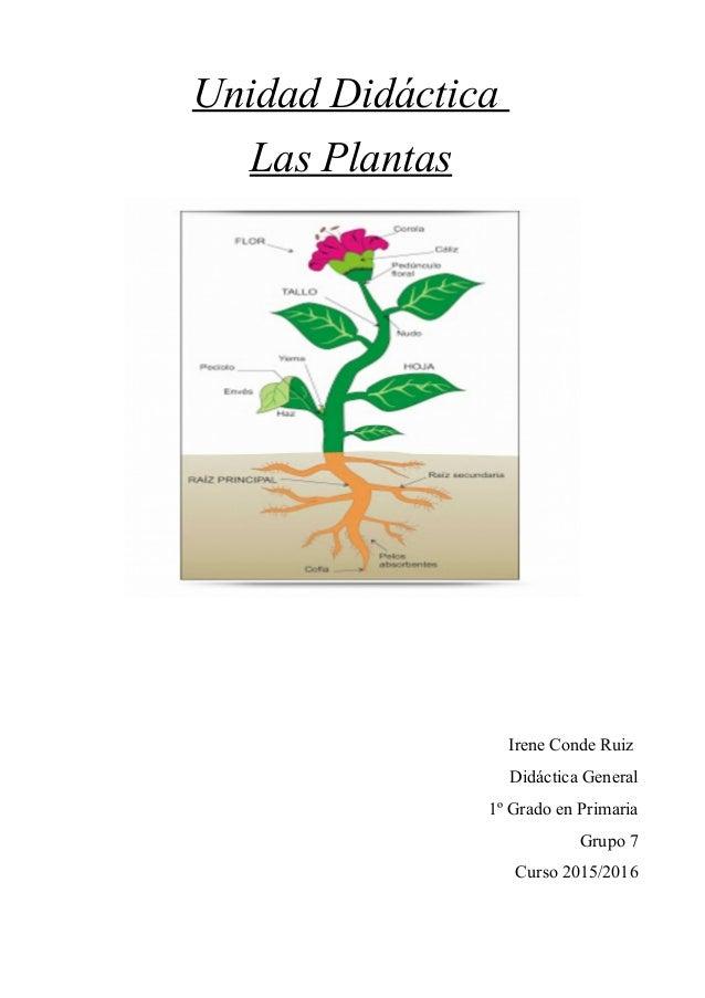 Unidad Didáctica Las Plantas Irene Conde Ruiz Didáctica General 1º Grado en Primaria Grupo 7 Curso 2015/2016