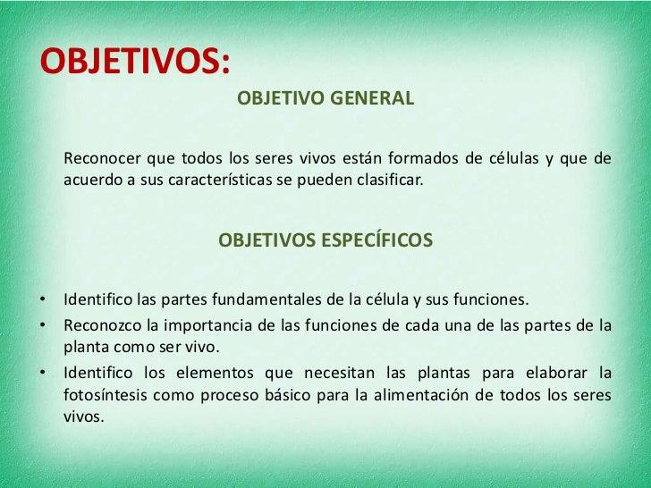 Unidad did ctica de ciencias naturales en 3o for Objetivo general de un vivero