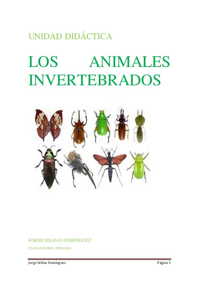 Unidad didáctica final los animales invertebrados jorge