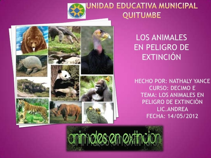 LOS ANIMALESEN PELIGRO DE  EXTINCIÓNHECHO POR: NATHALY YANCE     CURSO: DECIMO E  TEMA: LOS ANIMALES EN  PELIGRO DE EXTINC...