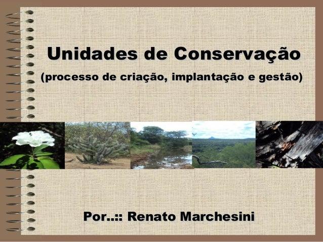 Por..:: Renato MarchesiniPor..:: Renato Marchesini Unidades de ConservaçãoUnidades de Conservação (processo de criação, im...