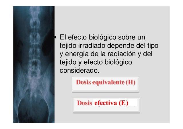 • El efecto biológico sobre un  tejido irradiado depende del tipo  y energía de la radiación y del  tejido y efecto biológ...