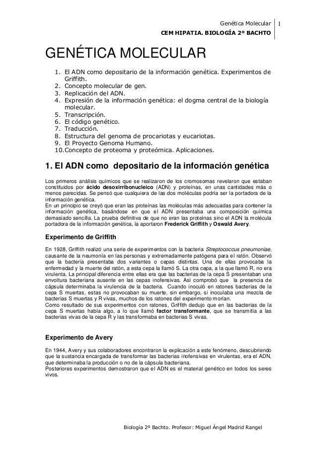 Genética Molecular        1                                                 CEM HIPATIA. BIOLOGÍA 2º BACHTOGENÉTICA MOLECU...