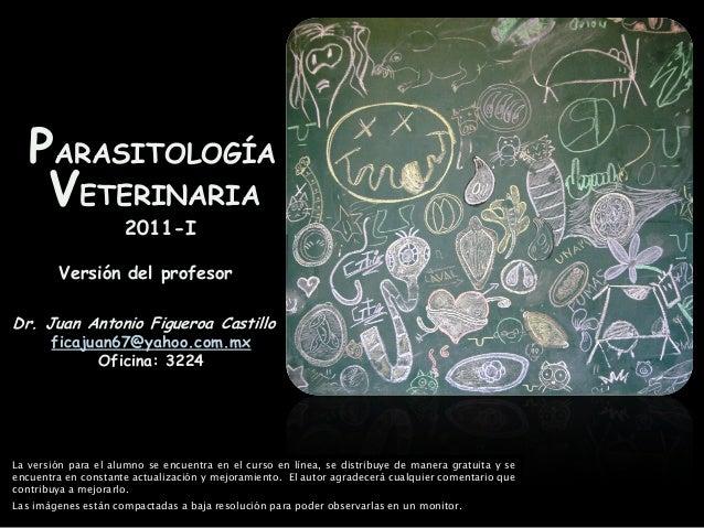 PARASITOLOGÍA VETERINARIA 2011-I Dr. Juan Antonio Figueroa Castillo ficajuan67@yahoo.com.mx Oficina: 3224 Versión del prof...