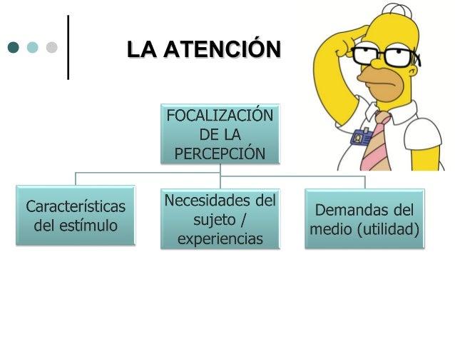Distintas etapas para el almacenamiento de la información SEÑALES FISICAS MEMORIA SENSORIAL MEMORIA DE CORTO PLAZO MEMORIA...