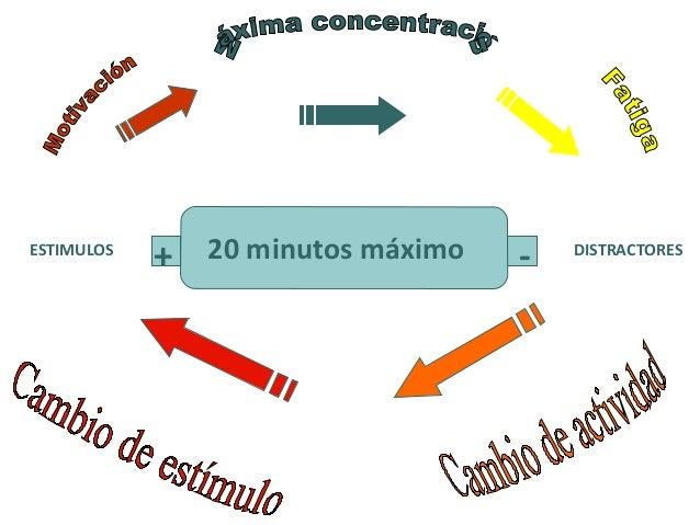 La memoria de corto plazo selecciona la información que le será de utilidad para una determinada actividad, descartando lo...