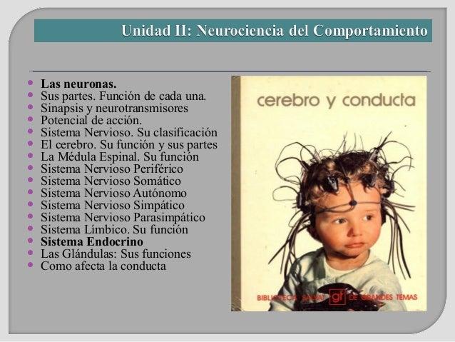    Las neuronas.   Sus partes. Función de cada una.   Sinapsis y neurotransmisores   Potencial de acción.   Sistema N...