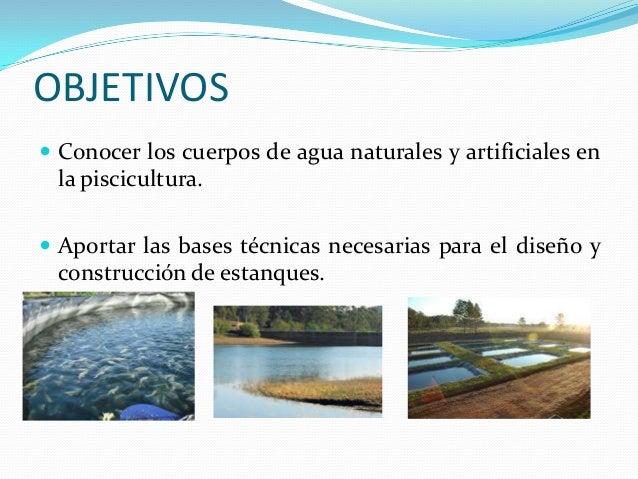 Unidad ii piscicultura uach Estanques para piscicultura