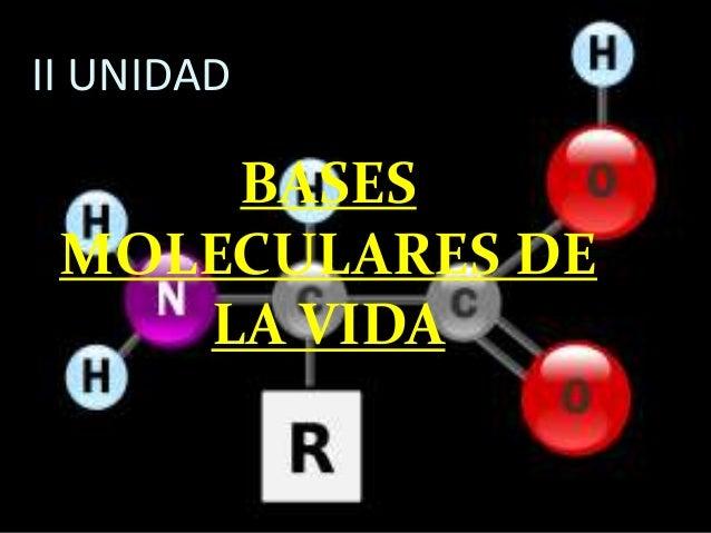 II UNIDAD  BASES MOLECULARES DE LA VIDA