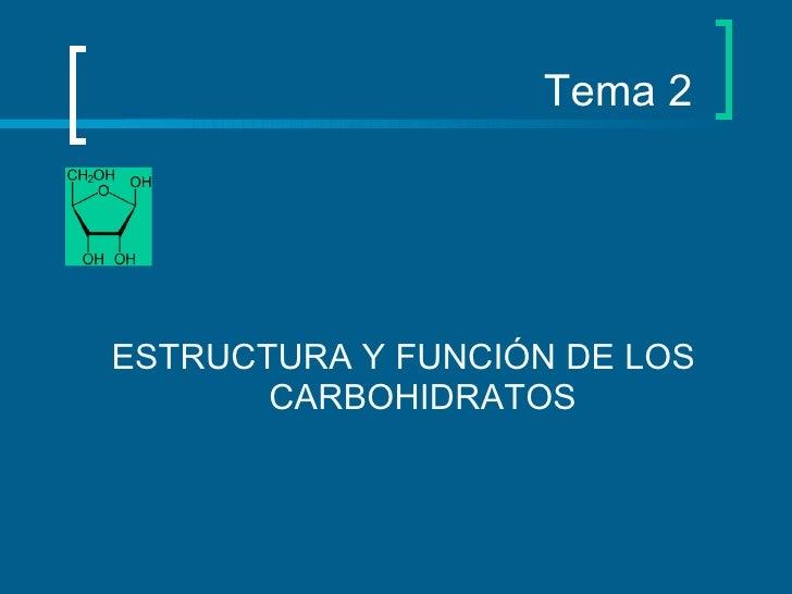 Tema 2 <ul><li>ESTRUCTURA Y FUNCIÓN DE LOS CARBOHIDRATOS </li></ul>
