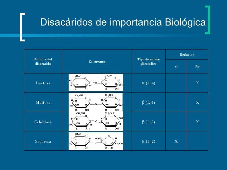 Disacáridos de importancia Biológica X    (1, 2) Sacarosa X    (1, 2) Celobiosa X    (1, 4) Maltosa X    (1, 4) Lactos...