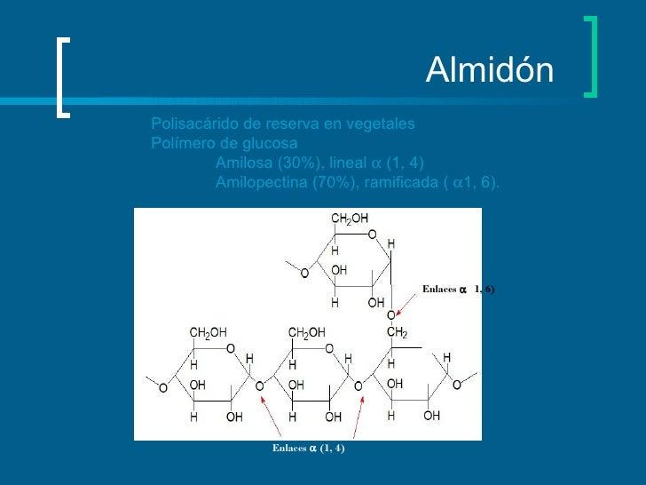 Almidón  Polisacárido de reserva en vegetales Polímero de glucosa Amilosa (30%), lineal    (1, 4)  Amilopectina (70%), ra...