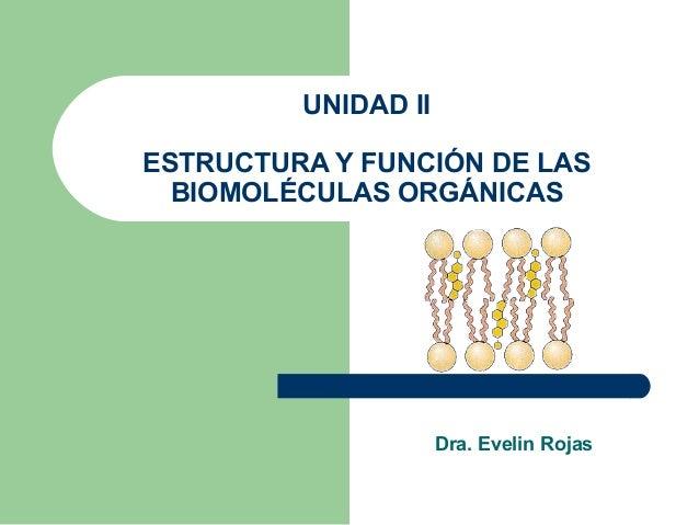 UNIDAD IIESTRUCTURA Y FUNCIÓN DE LAS  BIOMOLÉCULAS ORGÁNICAS                     Dra. Evelin Rojas