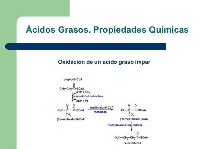 Ácidos Grasos. Propiedades Químicas      Oxidación de un ácido graso impar