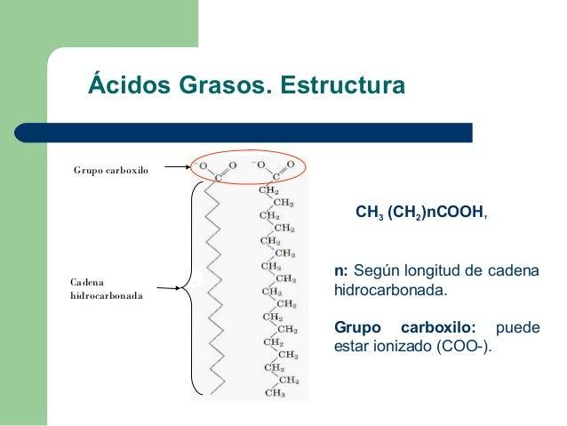 Ácidos Grasos. EstructuraGrupo carboxilo                        CH3 (CH2)nCOOH,                      n: Según longitud de ...