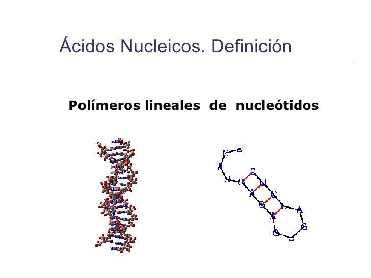 Estructura y función de Ácidos nucleicos Slide 3