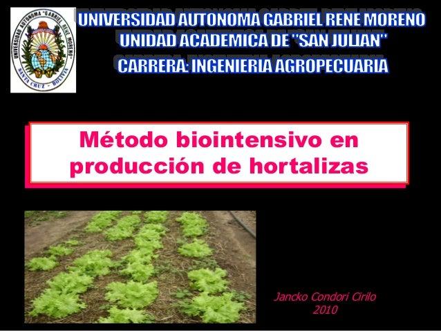 Método biointensivo en producción de hortalizas Jancko Condori Cirilo 2010