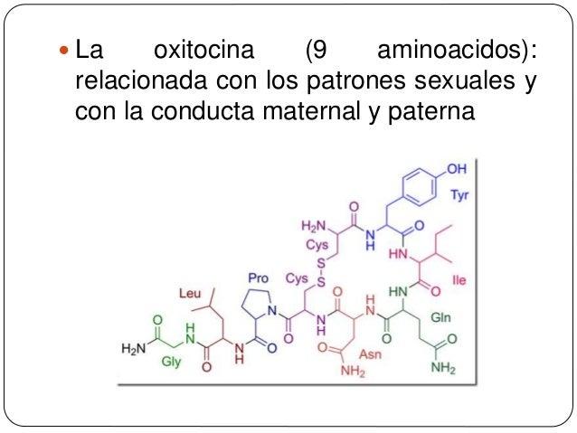 Unidad Iv Y V Aa Peptido Y Proteinas